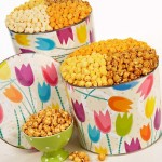 TPF Spring Tin with Tulips
